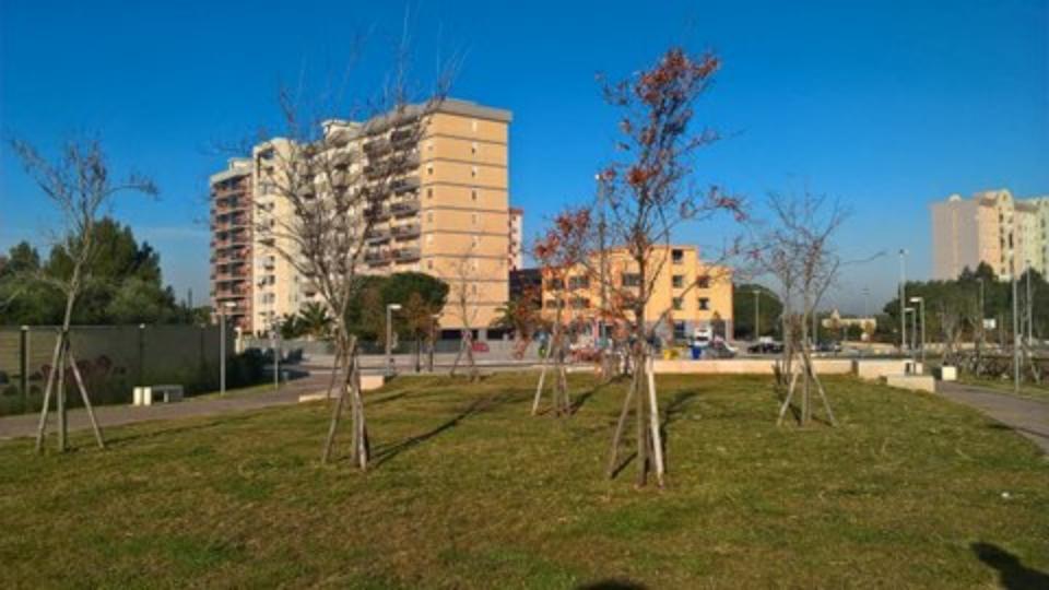 percorso giardino Loseto nuova (2)